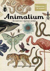 Animalium Fontini